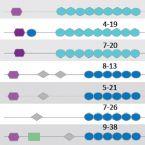 EUGENPATH - eukaryotic genes in intracellular bacteria